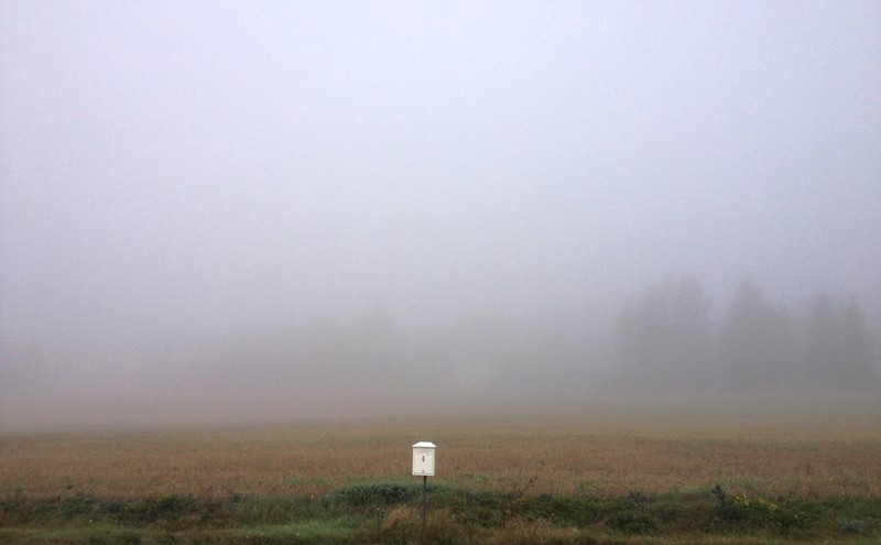The Coming Fall: The Misty Arrival of Autumn in Finland